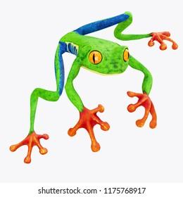 Tree Frog isolated on White Background. 3D illustration