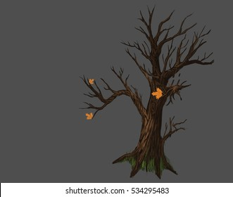tree in the late autumn isolated