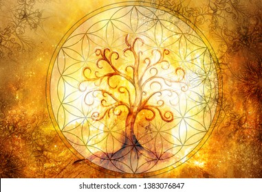 tree of life symbol and flower of life and space background with ornaments, yggdrasil.