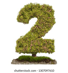 Tree Number 2. Tree in shaped of number 2, 3D rendering isolated on white background