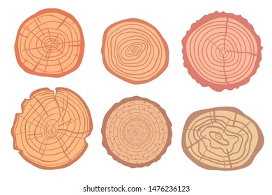 Tree rings on isolated white. Set of objects on isolation background. Colorful illustration for your design