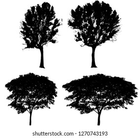 Tree set collection isolated on white background. Silhouette trees. Clipping path included