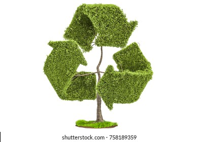 Tree in the shape of recycle symbol, 3D rendering isolated on white background