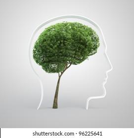 Tree shaped like a human brain inside a head silhouette.