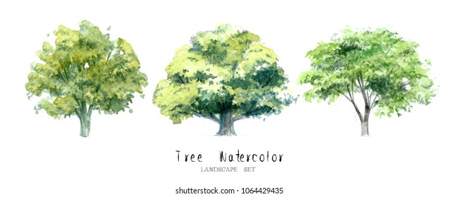 tree watercolor painted landscape set nature garden painting architecture element isolated white background ; art hand drawn green tree illustration brush sketch design watercolour. forest ecologic.