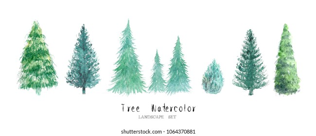 tree watercolor pine cedar set nature garden painting landscape architecture element conifer isolated on white background ; art hand drawn green trees illustration brush sketch design watercolour .