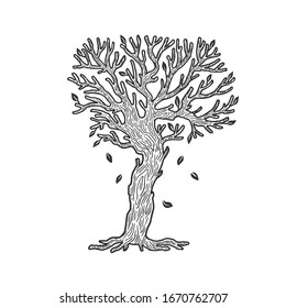 tree without leaves sketch engraving raster illustration. T-shirt apparel print design. Scratch board imitation. Black and white hand drawn image.