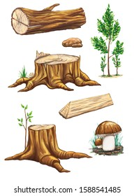 Trees, forest objects, logs and hemp. Set of cartoon hand-drawn elements on a white background.