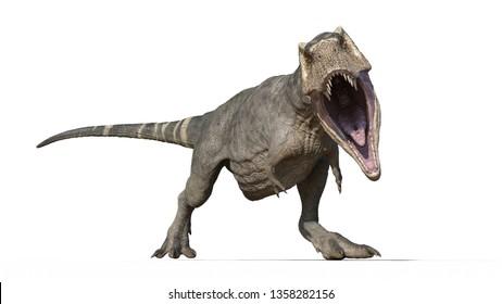 T-Rex Dinosaur, Tyrannosaurus Rex reptile, prehistoric Jurassic animal roaring on white background, front view, 3D illustration
