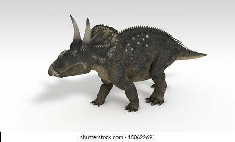 triceratops (diceratops) isolated on white