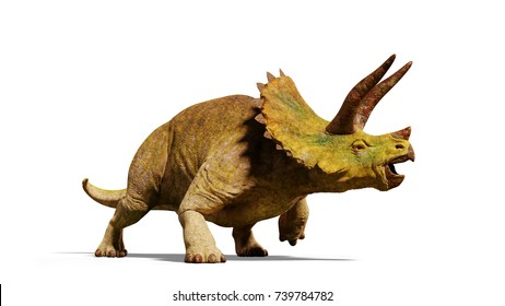 Triceratops horridus dinosaur (3d render isolated with shadow on white background)