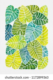 Tropical Alocasia Leaves Watercolor Painting / Illustration