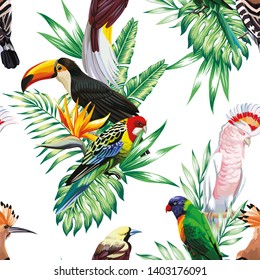 Tropical animals birds parrot maccaw and toucan on branch exotic floral banana palm beach tree. Seamless wallpaper pattern flower Strelitzia. Decorative abstract design on a white background.