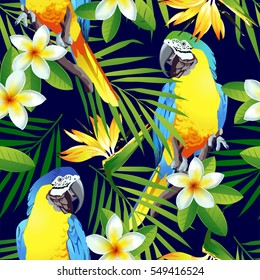 Tropical birds. Colorful parrots and exotic flowers.