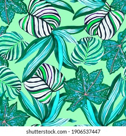 Tropical colorful watercolor illustration print pattern