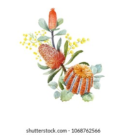 Tropical floral print, orange bangsia flowers, eucalyptus leaves,protea  leaves, blooming mimosa