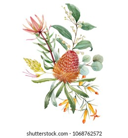 Tropical floral print, orange bangsia flowers, eucalyptus leaves, protea  leaves, floral print