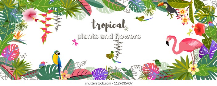 Tropical flowers and leaves. Exotic monster leaf. Caribbean colors. Tropical style. Summer vacation at the sea. Fruits and Beverages. Frame Template. Flamingo, parrot and toucan and colibri.  Banner