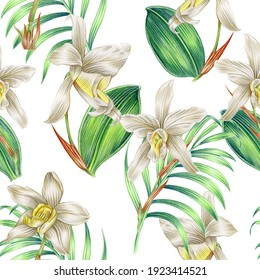 Tropical flowers, orchid flower, jungle leaves, floral seamless pattern background. Vintage botanical exotic illustration wallpaper, beautiful drawing