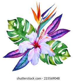 tropical flowers in watercolor, hibiscus, plumeria, monstera, palm, bird of paradise