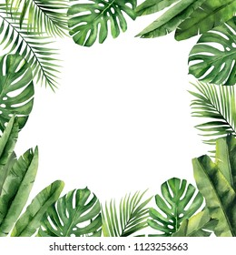 Tropical Border Hd Stock Images Shutterstock Tropical leaf border, nature summer frames and luxury palm leaves borders vector design background. https www shutterstock com image illustration tropical frame leaves watercolour illustration on 1123253663