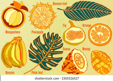 Tropical fruits and leaves. Exotic print design.