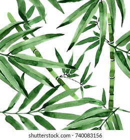 Tropical leaves bamboo tree pattern in a watercolor style. Aquarelle wild leaves for background, texture, wrapper pattern, frame or border.