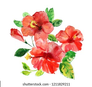 Tropical leaves and hibiscus flowers watercolor illustration. bright large flowers and buds of red hibiscus isolated on white background