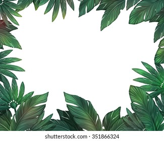 Tropical leaves from jungle. The frame with a white background.
