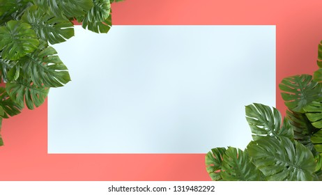 Tropical leaves Monstera on pink background. Template layout, minimal fashion summer concept art . Flat lay, top view. 3d rendering.