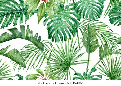 Tropical leaves. Monstera, strelitzia, palms. Watercolor seamless pattern.
