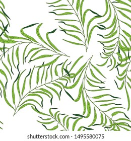 Tropical leaves on white background. Summer bright background