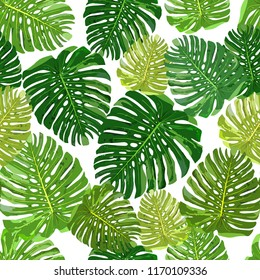 Tropical leaves seamless pattern colorful isolated hand drawn plants