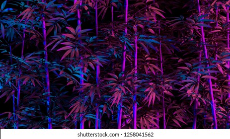Tropical palm bamboo leaves in vibrant bold gradient holographic neon colors. Concept art. Minimal surrealism background. 3d render rendering