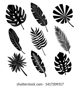 Tropical palm leaves.Handdrawn illustration of black silhouettes isolated on white background.Raster version.Clipart