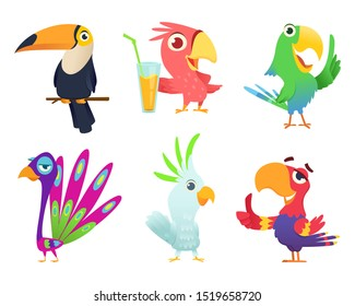 Tropical parrots characters. Feathered exotic macaw birds pets colored wings funny exotic flying arara action poses pictures