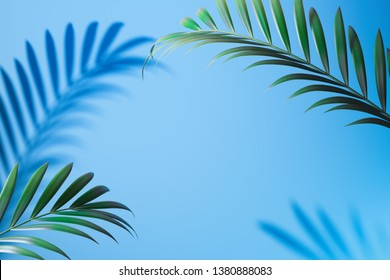 Tropical plant shadow on light blue background with empty space. 3D rendering.