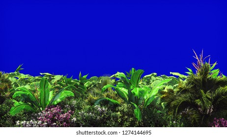 Tropical plants in the wind on blue screen. Beautiful summer background. 3D Rendering