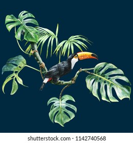 tropical. toucan in leaves