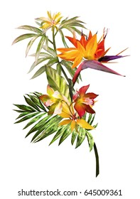 Tropical watercolor flowers - Strelitzia. card with floral illustration. Bouquet of flowers isolated on white background. Leaf and buds. Exotic composition for invitation