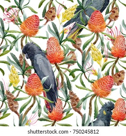 Tropical watercolor pattern Australian Banksia flower , seed and leaves. yellow exotic flowers, parrot black cockatoo