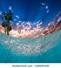 Tropical Waters. Underwater view. Green palm trees. 3D rendering