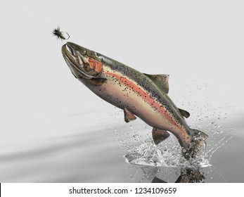 Trout fish salmon catched in white background with splashes hooked by fly fishing lure bait 3d render