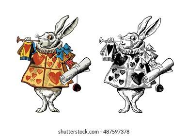 Trump of rabbit