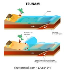 Tsunami and Earthquake.