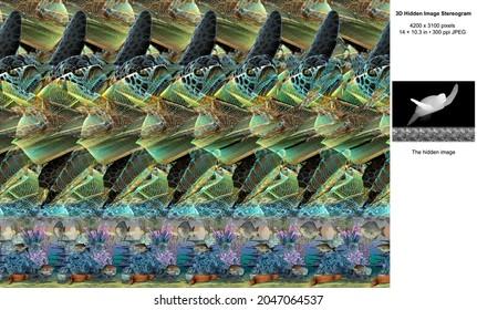 Tubbataha Reefs 3D Hidden Image Stereogram Illusion