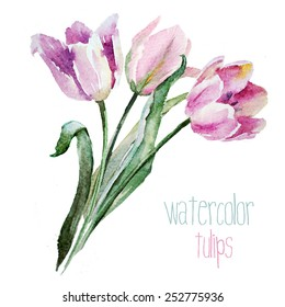 tulips, bouquet of tulips, watercolor, painting, holiday, spring