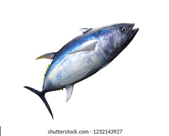 Tuna fish posing in big game fishing background 3d render