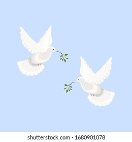 Two beautiful shiny white doves flying in a blue sky holding a tree branch.