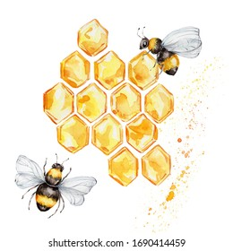 Two bees and honeycombs; watercolor hand draw illustration; with white isolated background